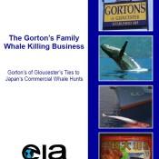 The Gorton's Family Whale Killing Business