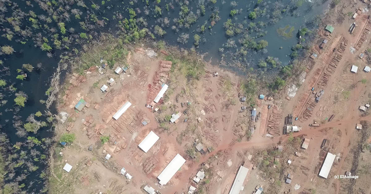 illegal logging sawmill, sesan 2, cambodia