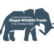 All eyes are on London for a major conference to step up the fight against illegal wildlife trade