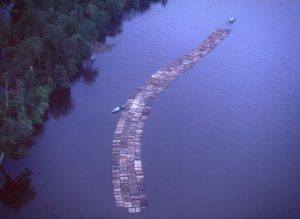 A long string of logs tied together on a wide river, guided by boats