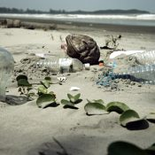 Time to turn the tide of plastic waste choking our oceans