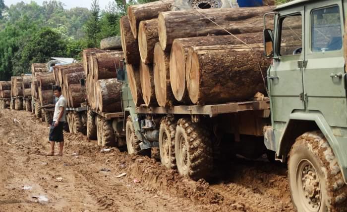 Log trucks in Kachin