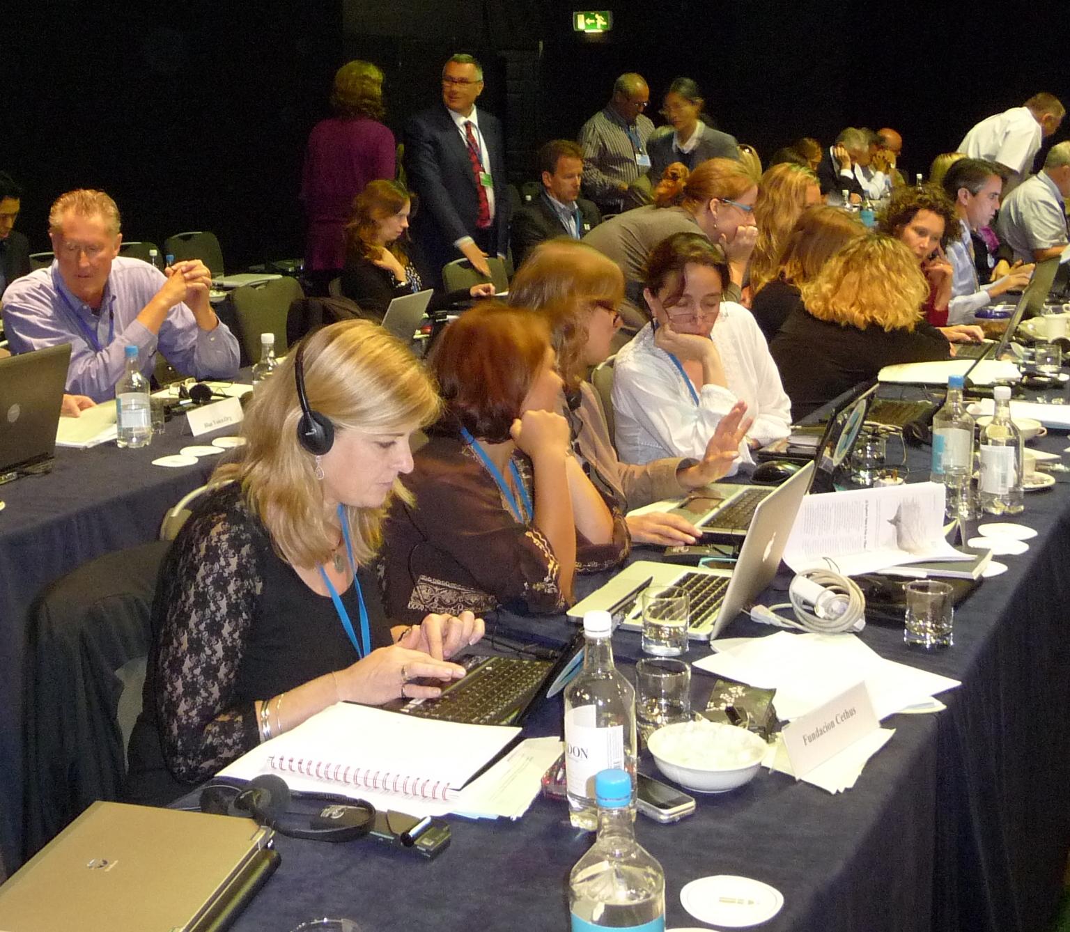 NGOs at work at the IWC. Credit EIA.
