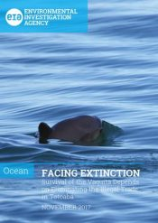 Facing Extinction: Survival of the Vaquita Depends on Eliminating the Illegal Trade in Totoaba