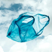 Action alert: Tell the EU to say 'no' to single-use plastic bags