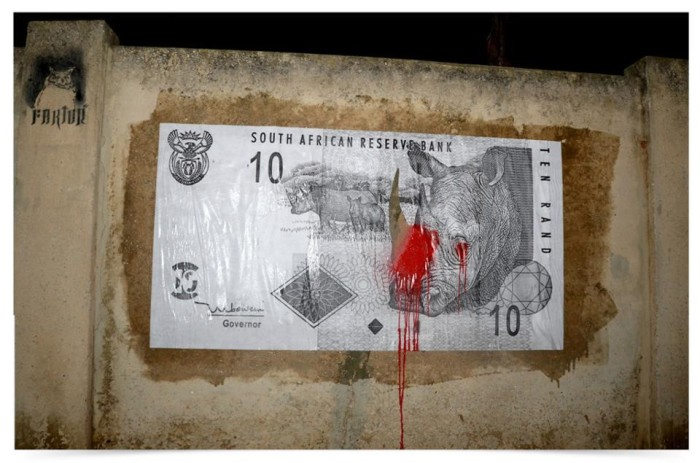 All about the money? Rhino awareness graffiti by street artist Faktor in Port Elizabeth, South Africa