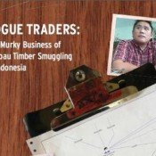 'Rogue traders' in timber smuggling exposed