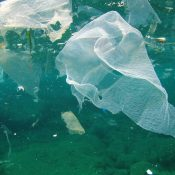 Supermarkets challenged to act faster on plastic, as new survey launches to rank their efforts