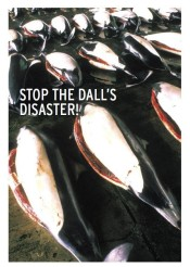 Stop The Dall's Disaster