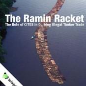 The Ramin Racket