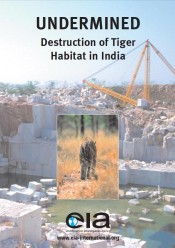 Undermined: Destruction of Tiger Habitat in India