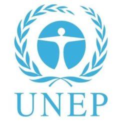Blue UNEP logo